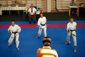 Medale dla dzieci z Bezrzecza – Turniej Karate wyniki